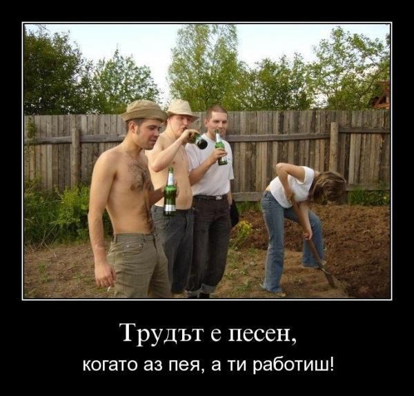 pernik (5)